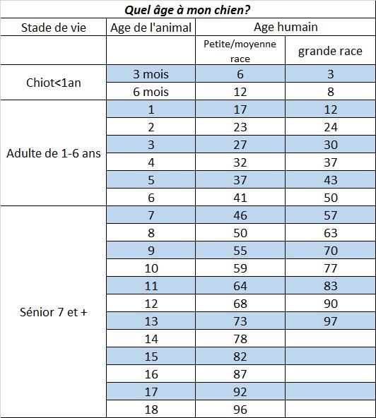 Age Reel Chien quel âge à mon chien? - clinique vétérinaire adk